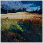Summer fields by Gill Drew